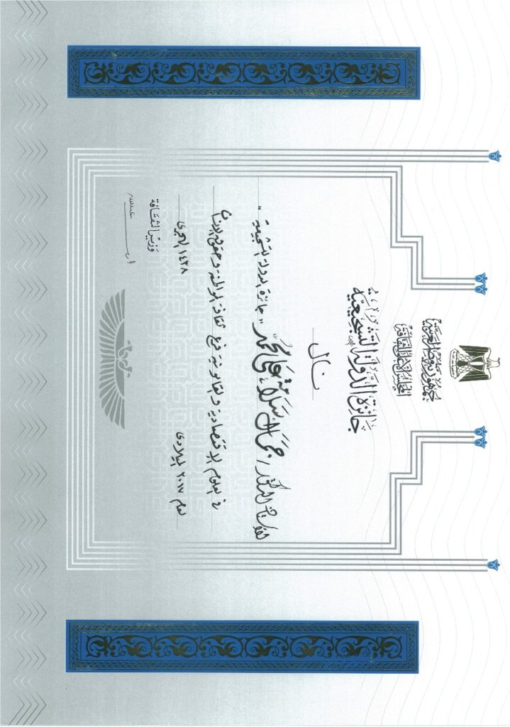 دكتور جمال سلامة عميد كلية السياسة والاقتصاد جامعة السويس جائزة الدولة